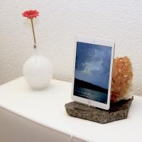 RD111-iPad-mini