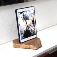 RockDock119-iPad-air2-smart-cover