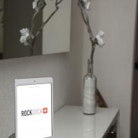 iPad mini Stone Dock RD100.JPG