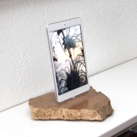 RockDock119-iPad-mini